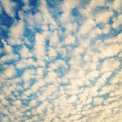 February 14: Cloud